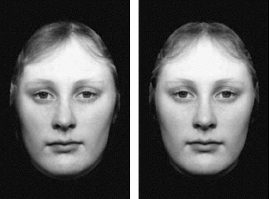 黄金比の美人顔 や 左右対称の顔は、実は魅力的ではない