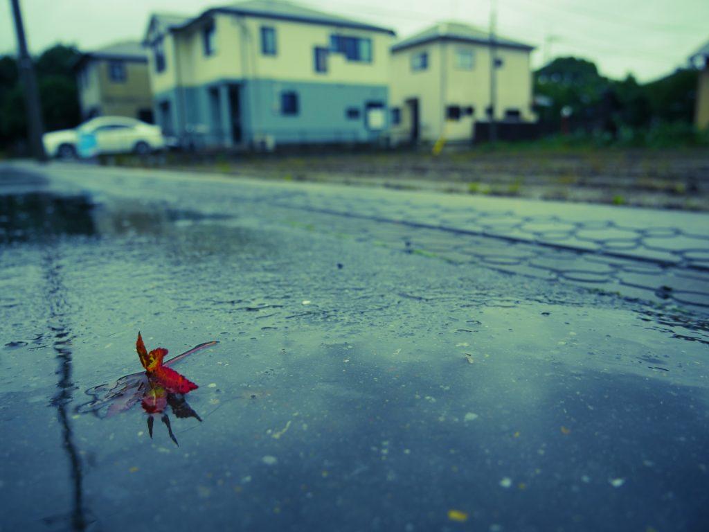 雨の日だっておしゃれしたい!