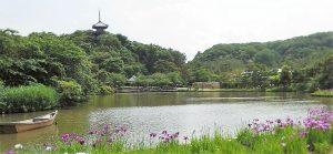 まったりデートを楽しもう♡ 神奈川のまったりデートスポット 7選