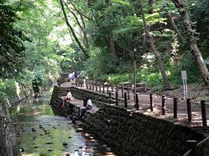 まったりデート派におすすめ♡ 東京都内のまったりデートスポット 7選