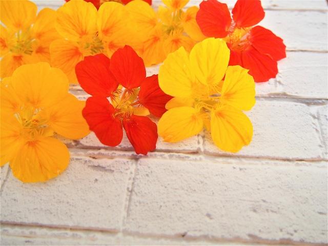 食べられる花「エディブルフラワー」レシピ